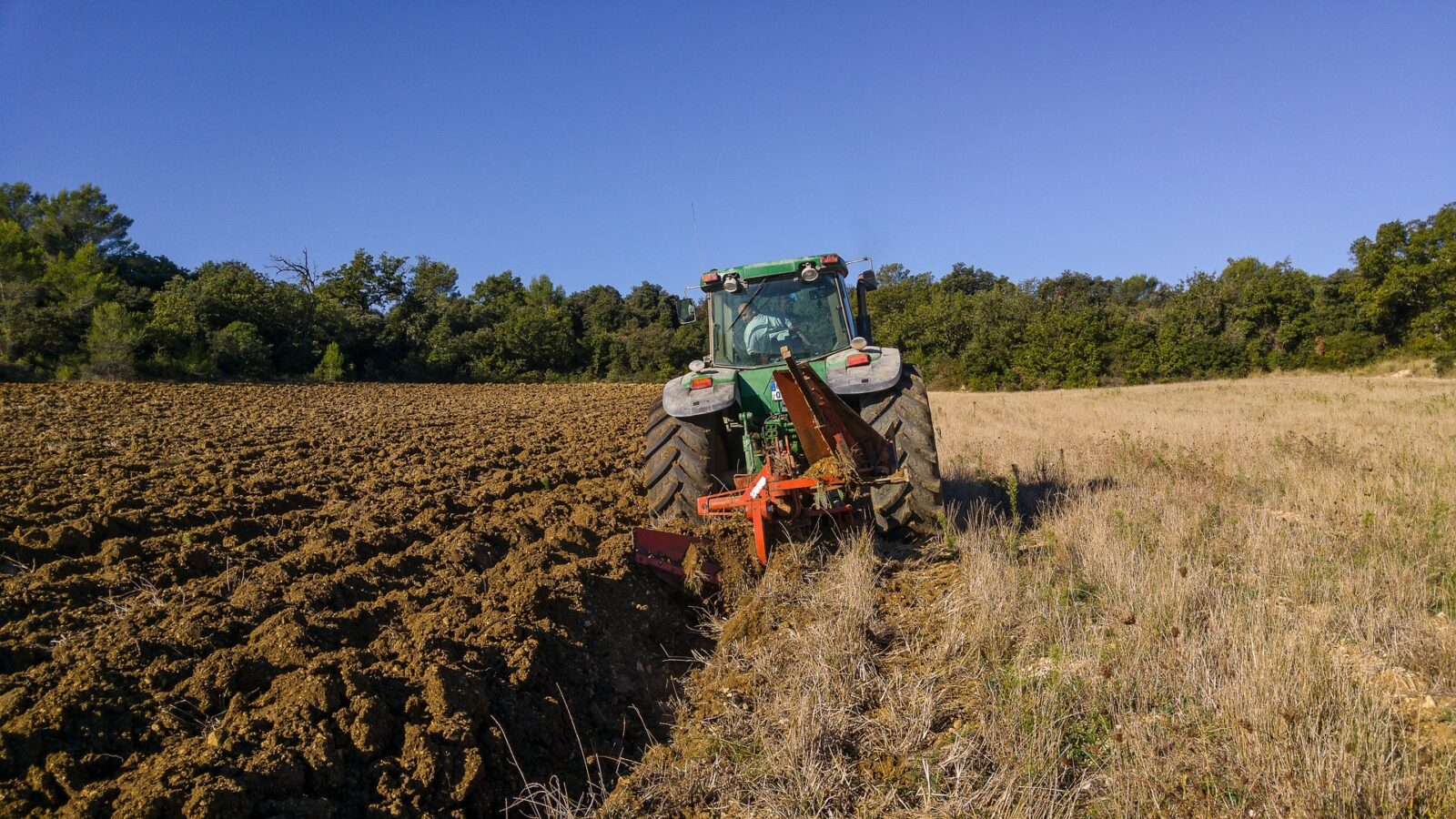 Gather up your bailing twine – it's time for the National Ploughing Championships