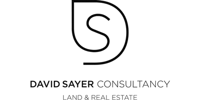 David Sayer Consultancy logo